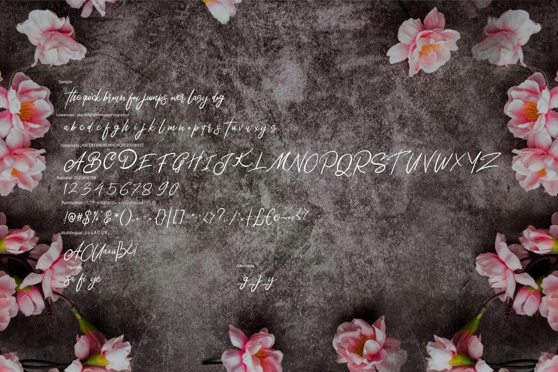 Bentley | Modern Script Font example image 6