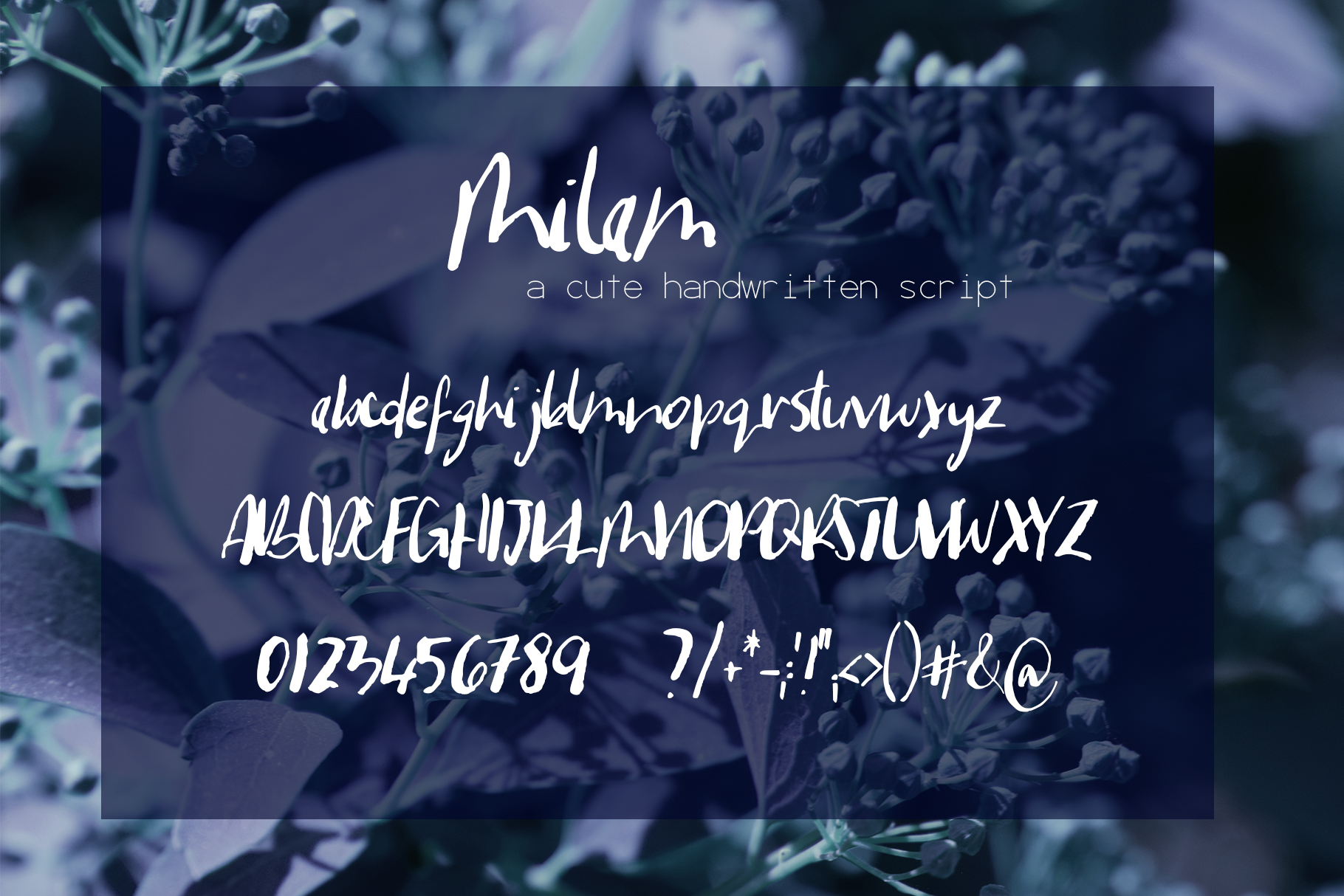 Milam Font example image 7