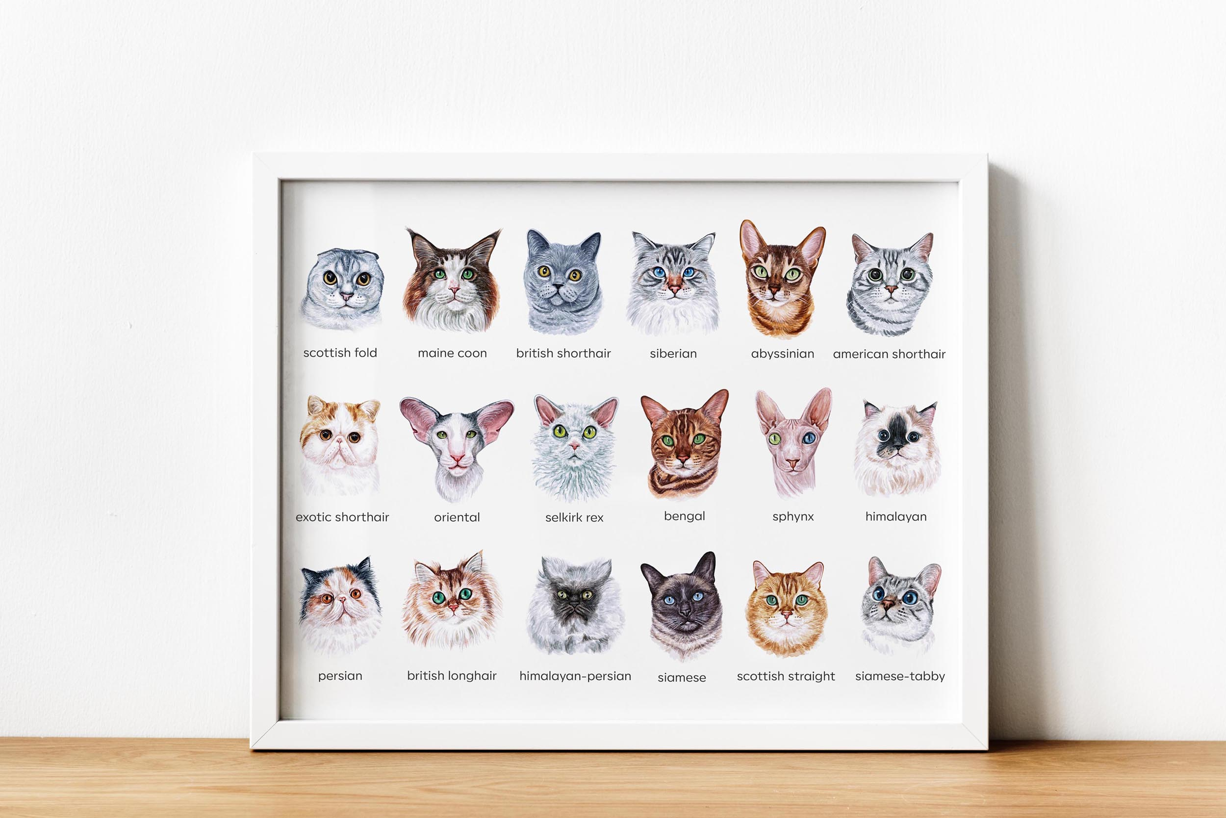 Watercolor 18 cat breeds illustrations. Cute cat. Meow. example image 6