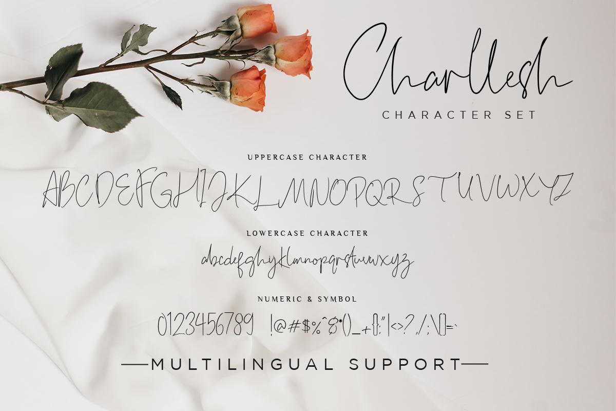 Charllesh Classy Signature example image 12