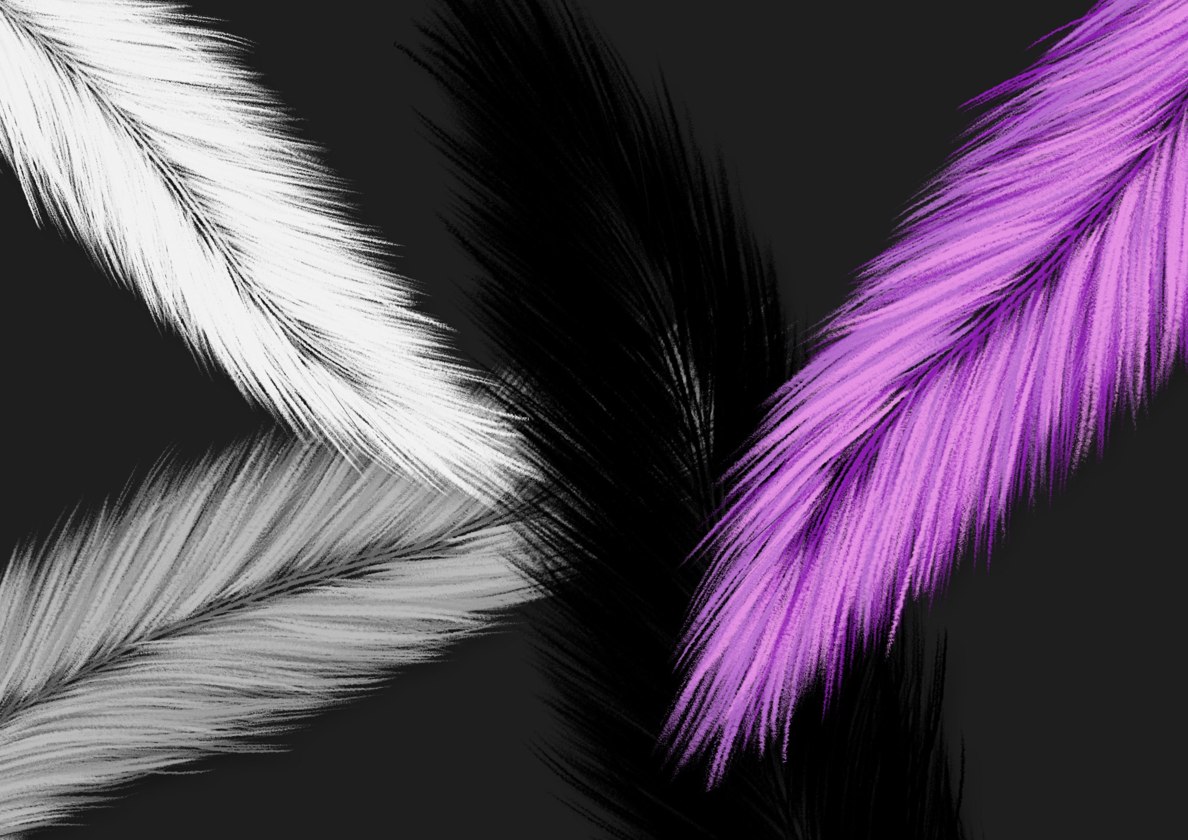 Fuzzy Feathers PNG example image 2