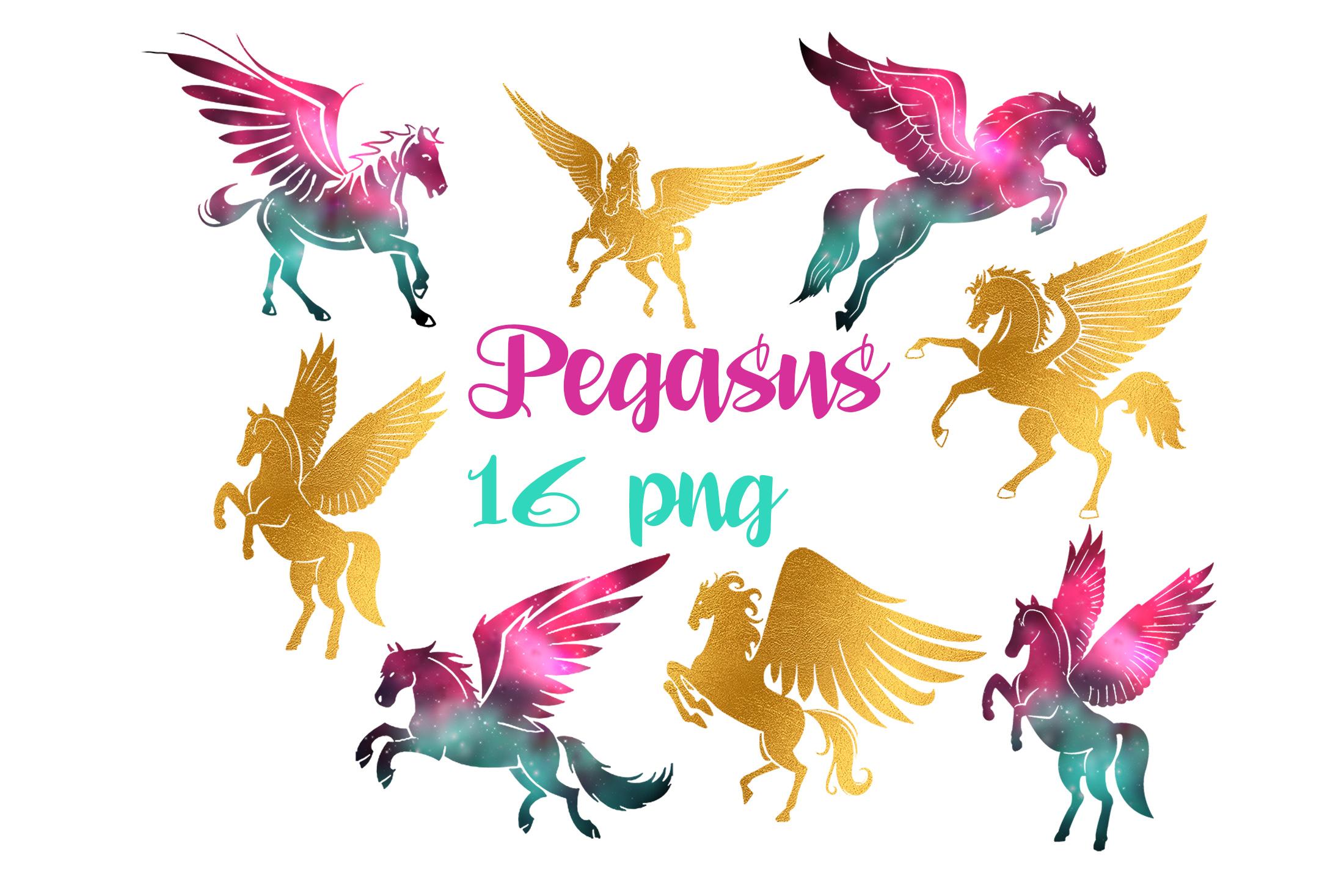 Pegasus example image 2