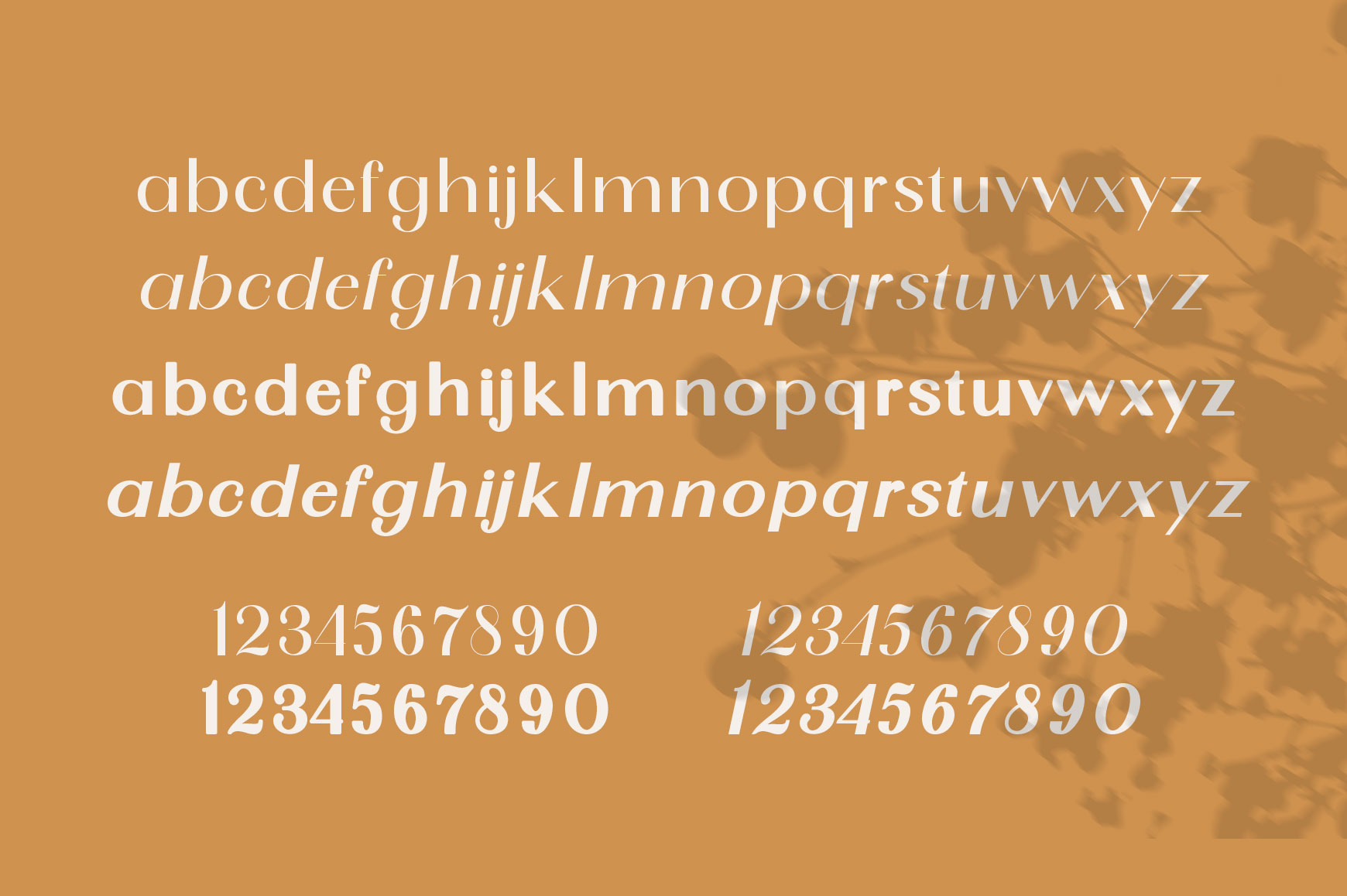 SunGold - Font Family example image 8