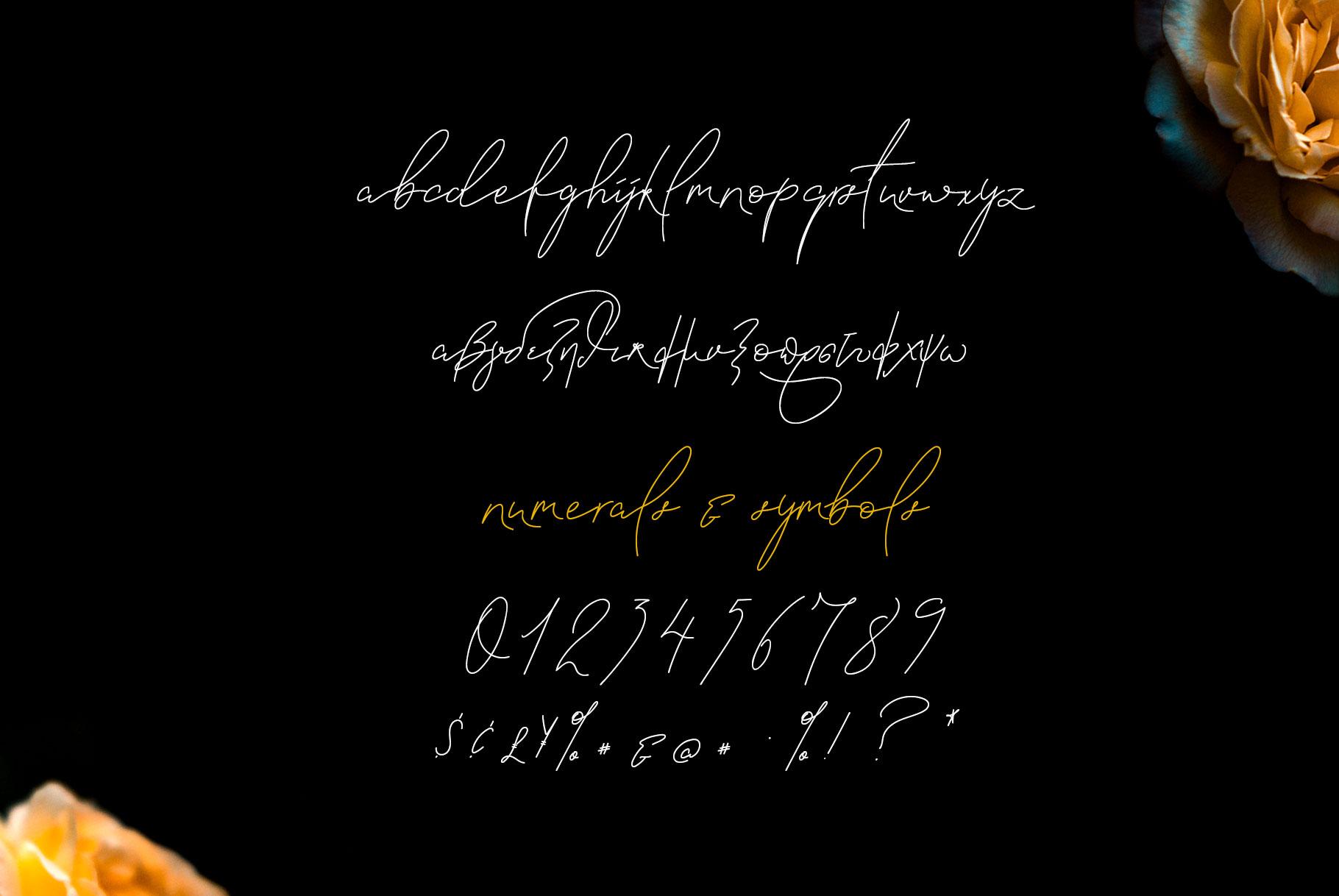 Signature Font Blanc Seing example image 14