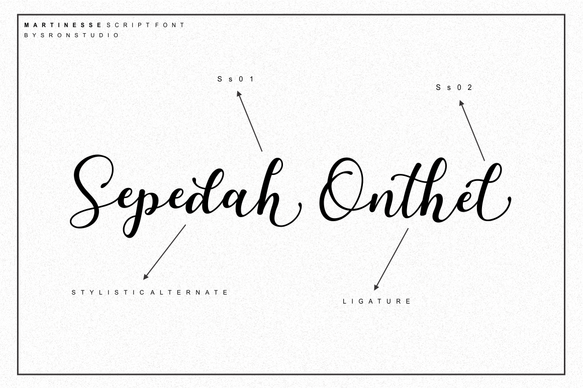 Martinesse - Script Font example image 11