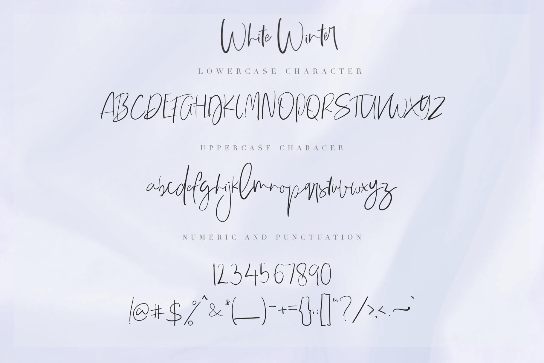 White Winter example image 12
