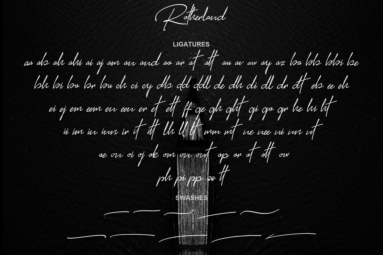 Rotherland - Luxury Signature Font example image 10