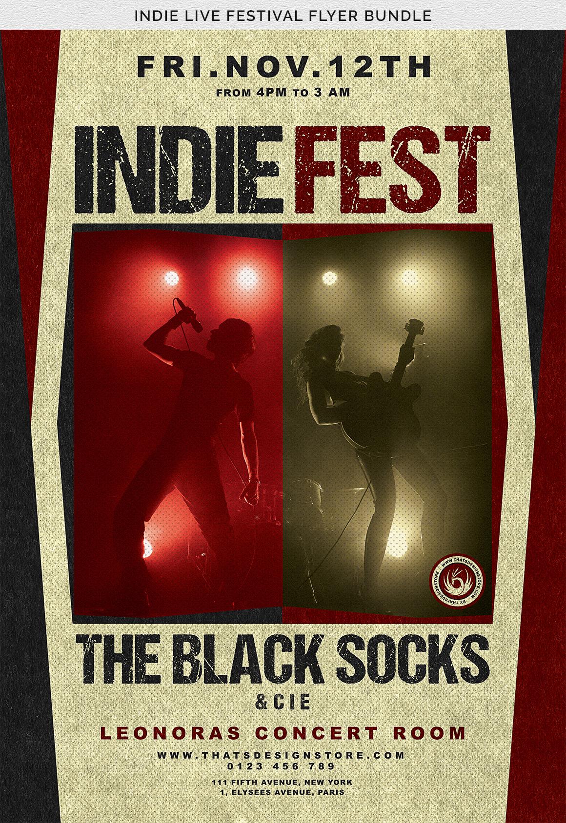 Indie Live Festival Flyer Bundle example image 11