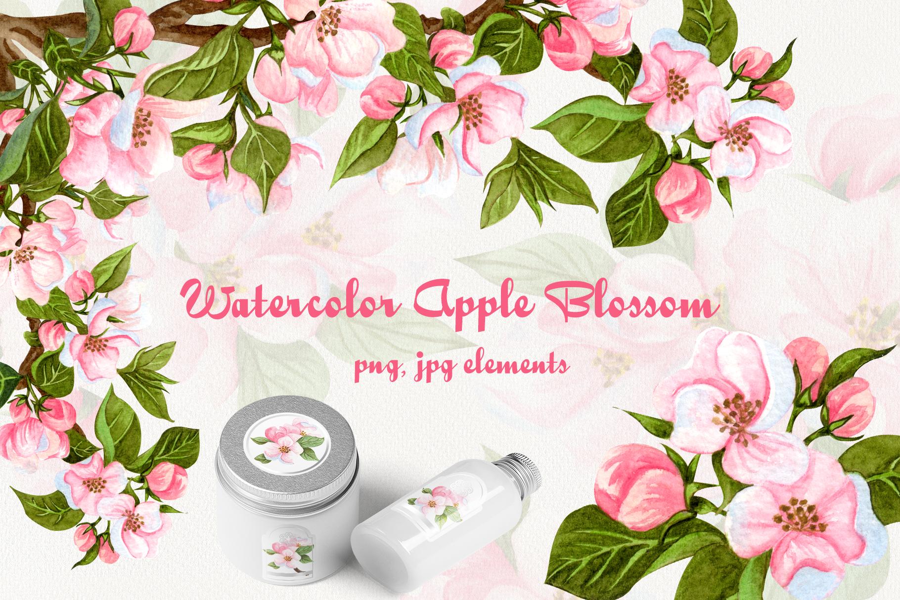 Apple Blossom Watercolor Clip ARt example image 1