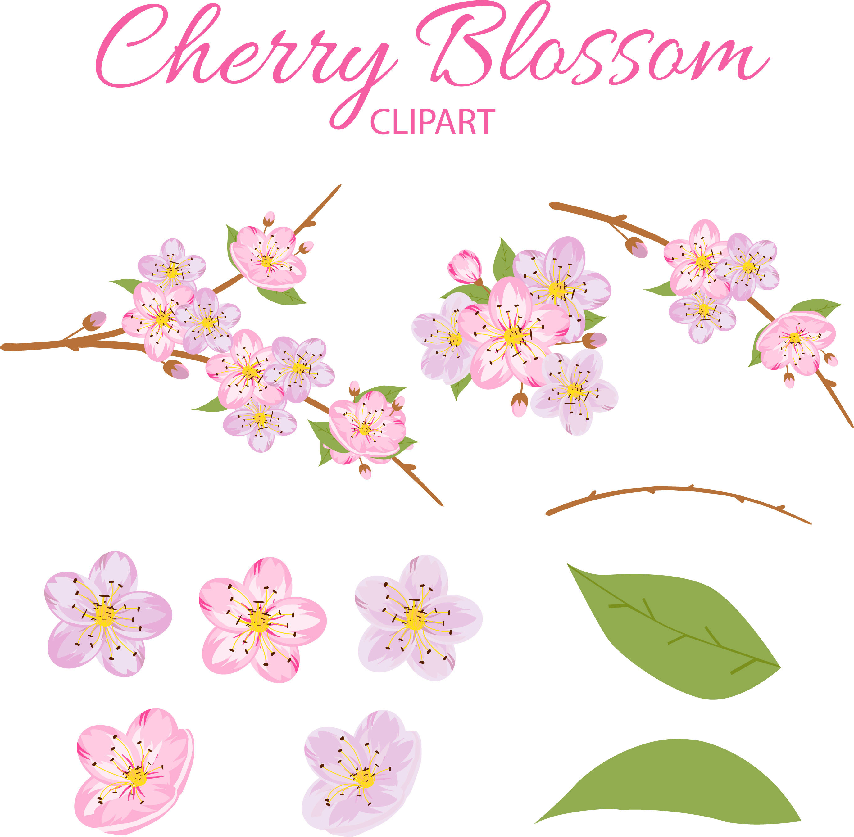 Cherry Blossom Clipart example image 3