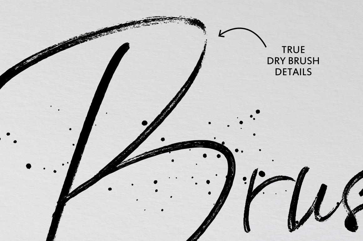 BlackSilver Brush Font example image 5