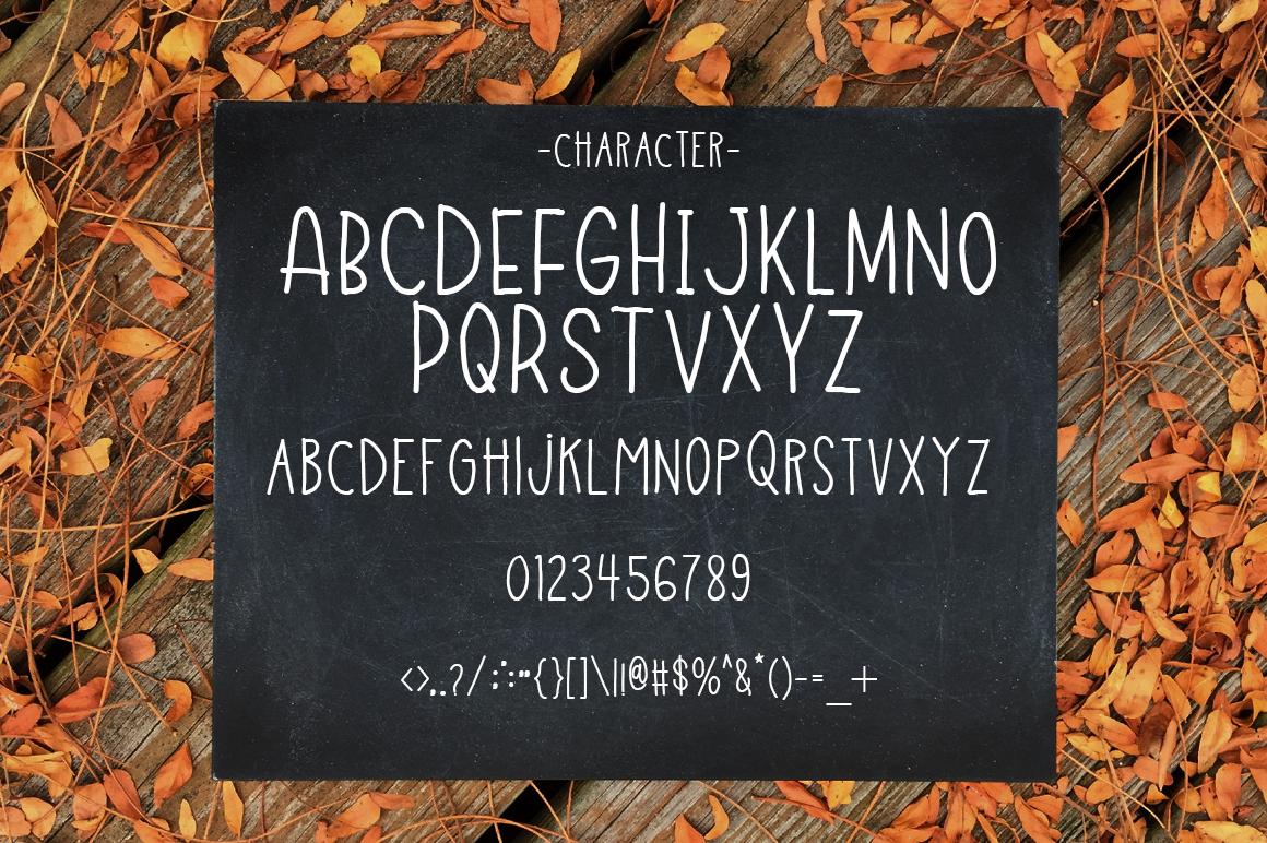 Fun Field a Fun typeface example image 4