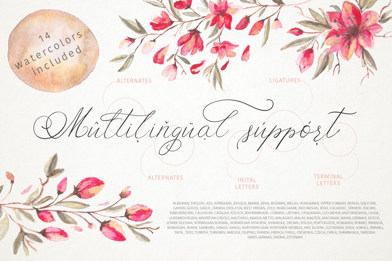Schonheit font & watercolors. example image 4