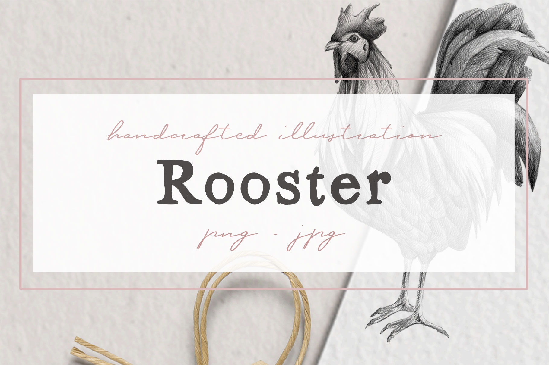 Hand drawn Rooster Illustration example image 1