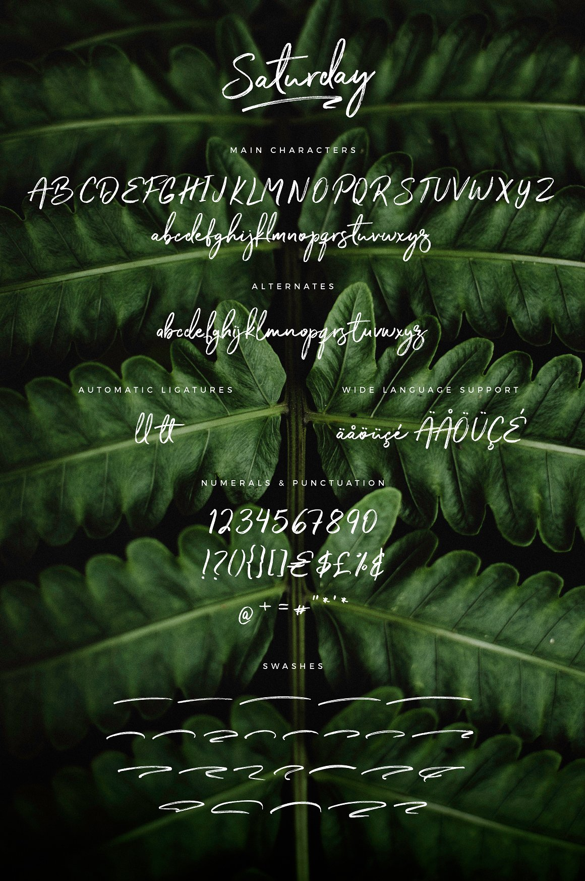 The Saturday Typeface example image 8