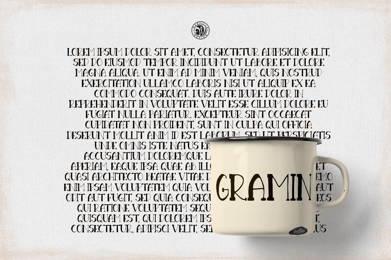 Gramin Font example image 4