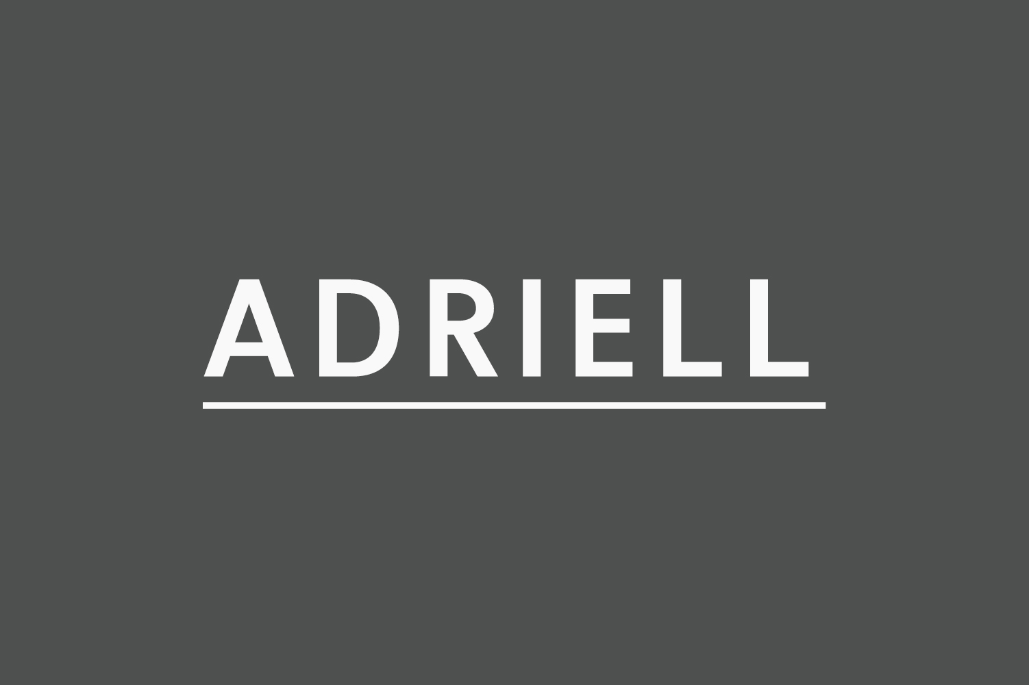 Adriell Sans Serif Font Family example image 1