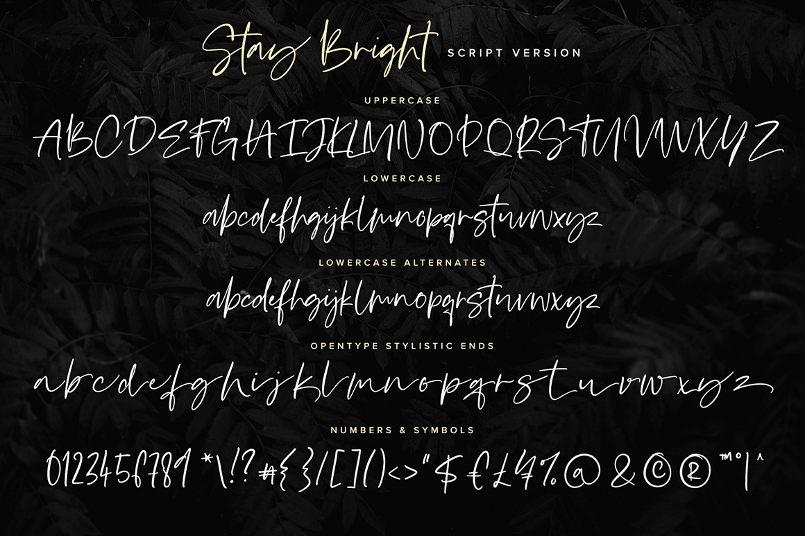 Stay Bright Font Duo example image 8