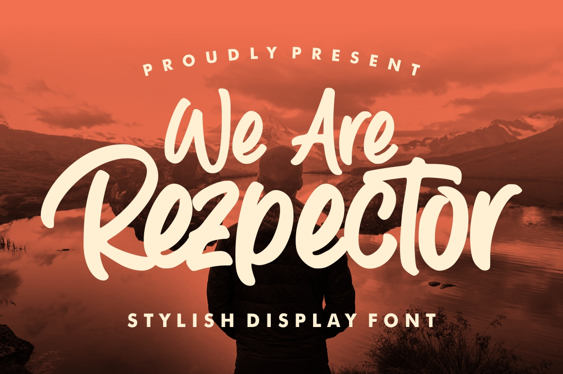 Rezpector || Stylish Display Font example image 12