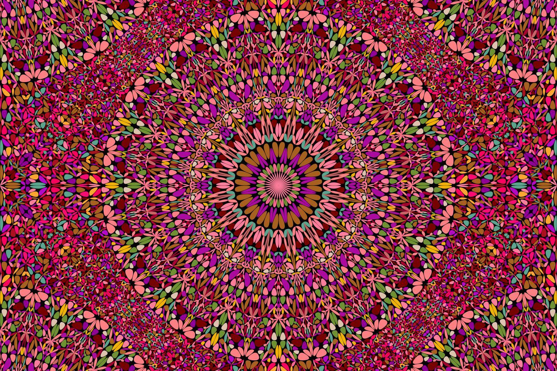 48 Seamless Floral Mandala Patterns example image 4