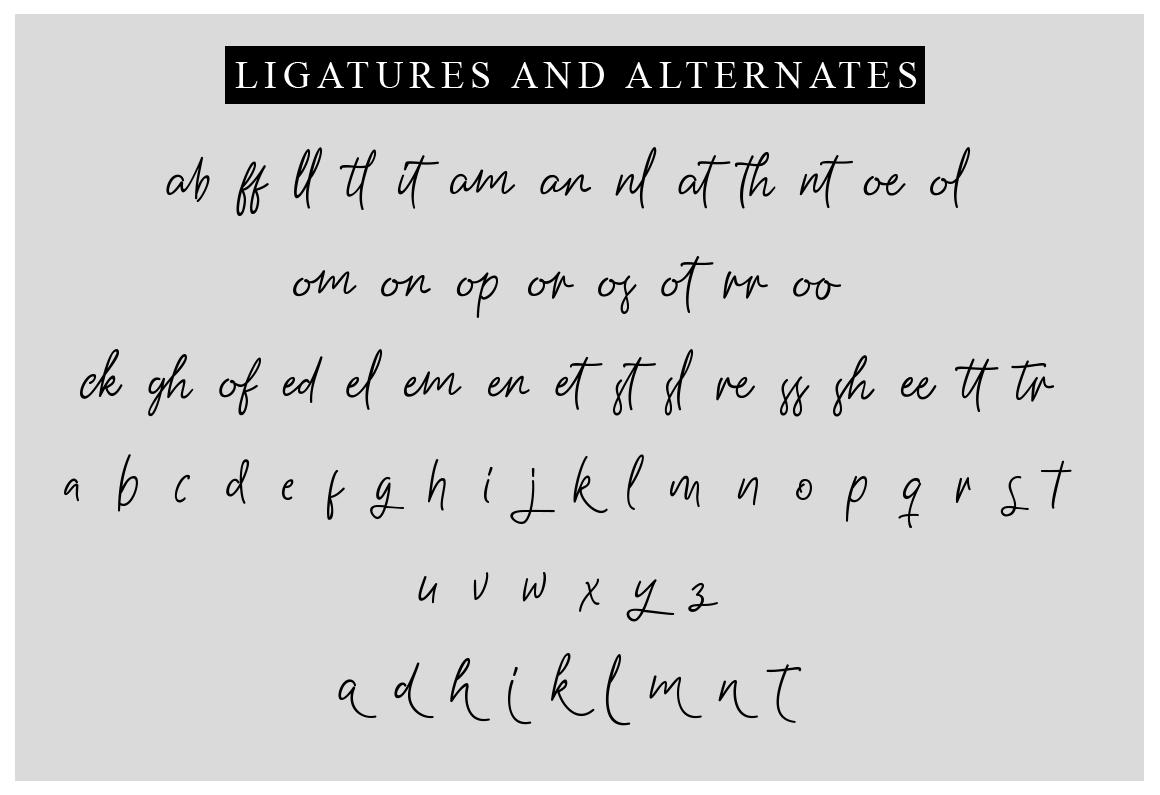 Gasterye Script example image 4