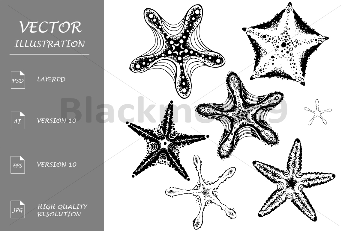 Silhouette Starfishes example image 1