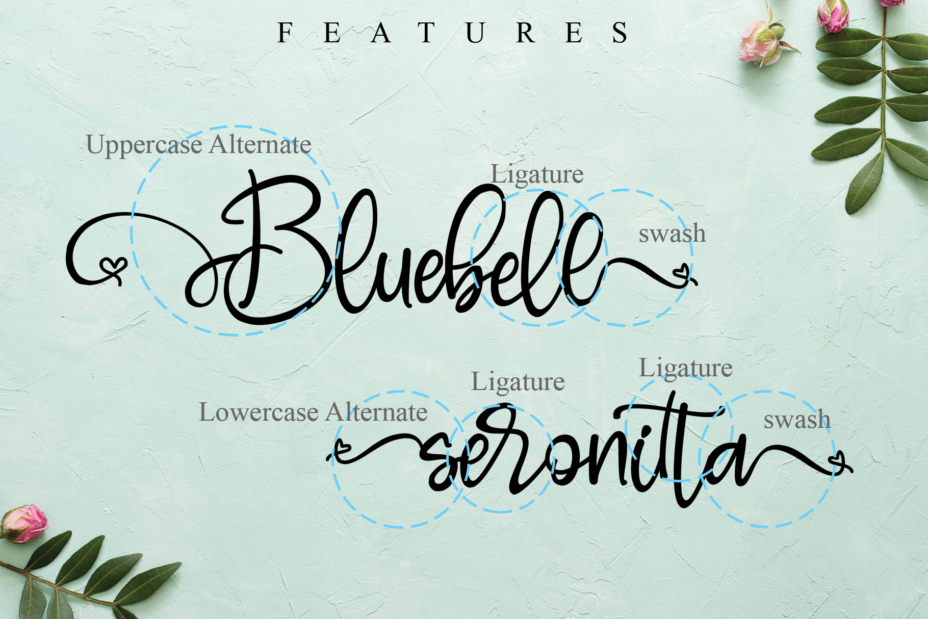 Bluebell example image 10