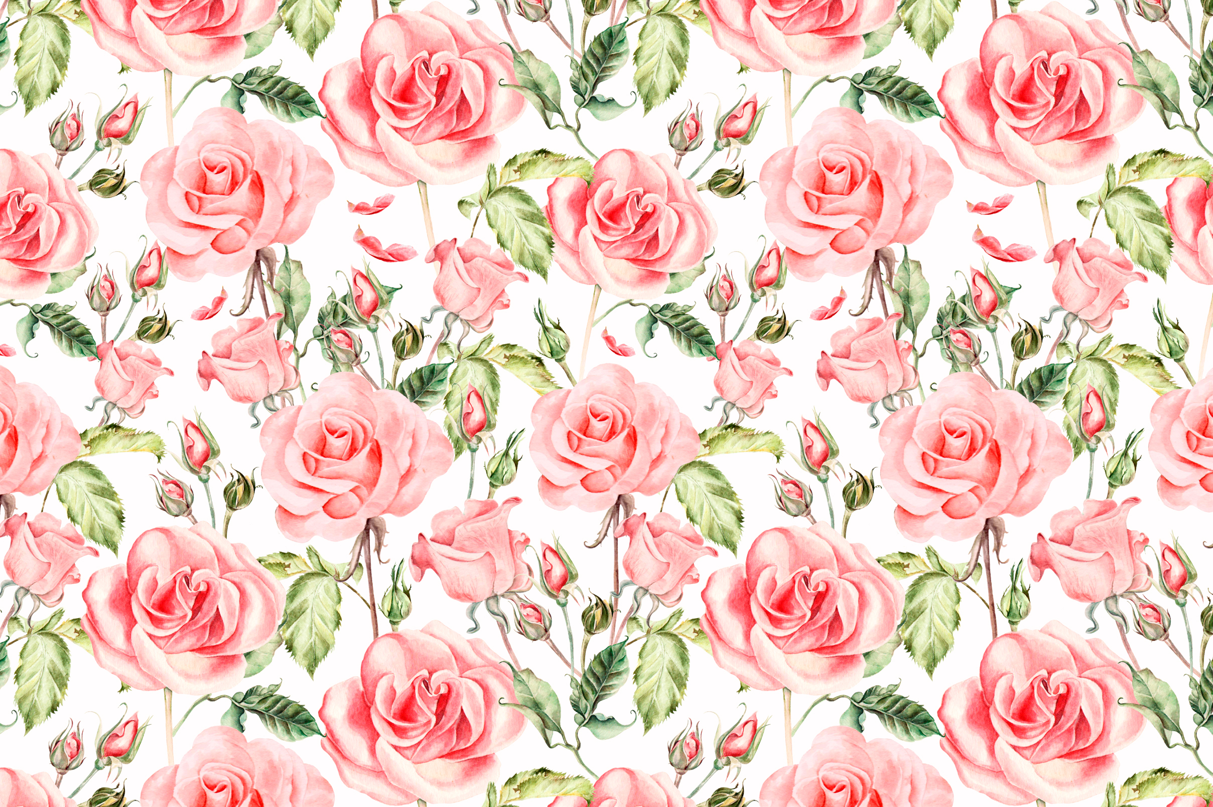Hand drawn watercolor roses example image 5