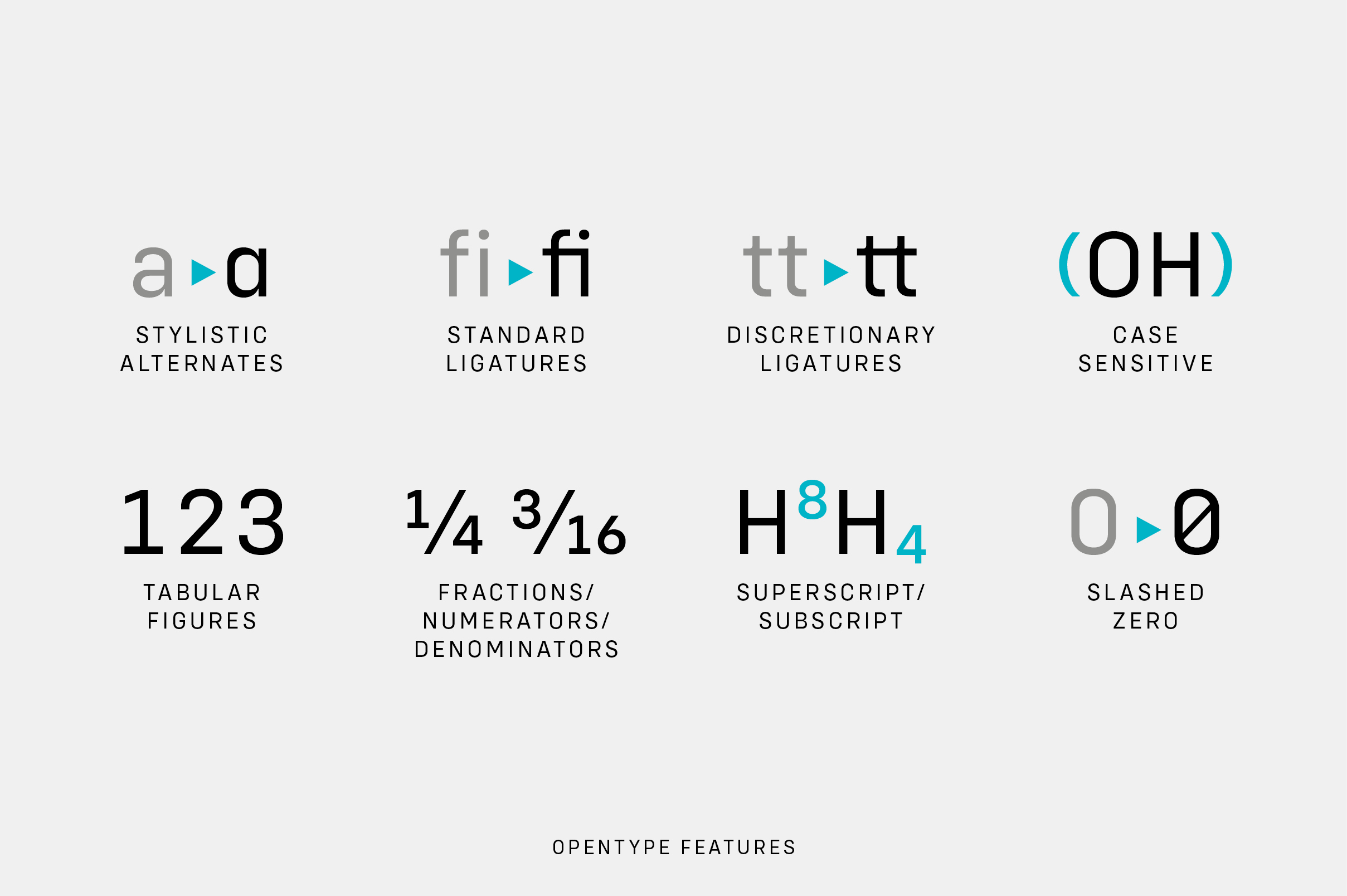 Config Complete Font Family example image 17