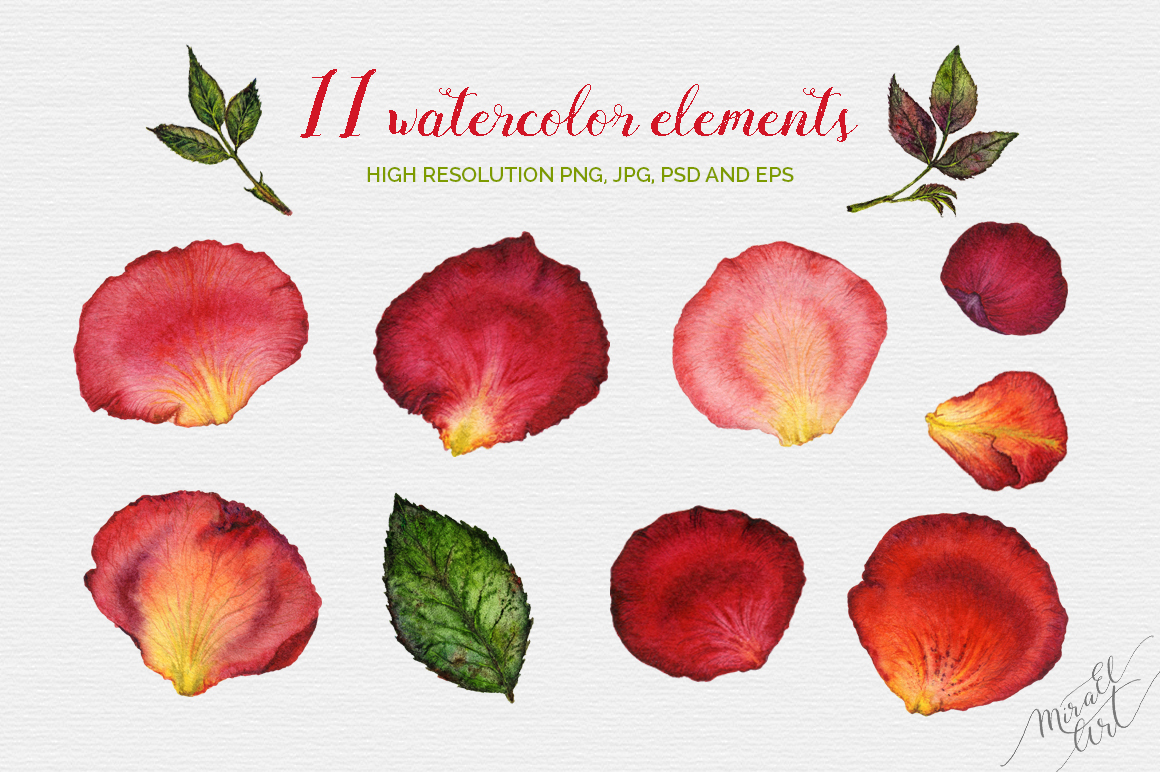 Floral watercolor rose petals example image 2