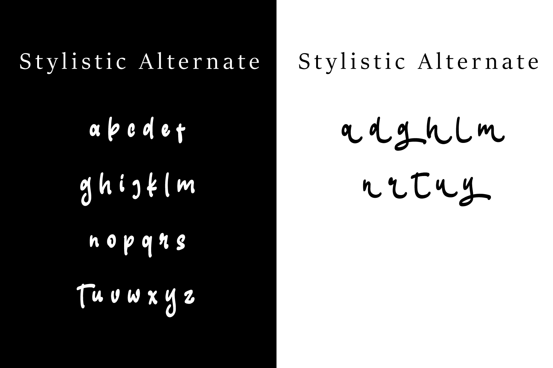 Skilled | Elegant Fonts example image 11