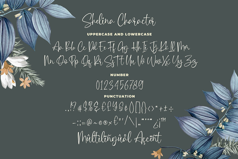 Shelina Beauty Script Font example image 4