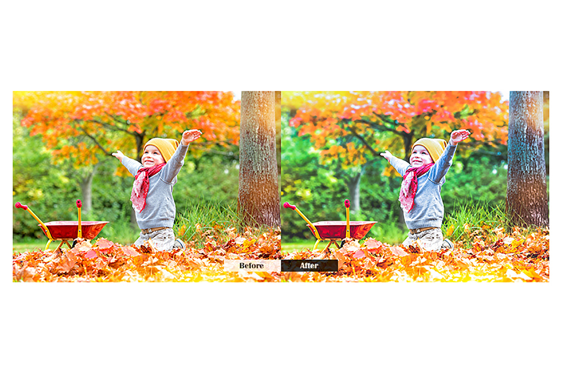 Autumn Lightroom Mobile Presets example image 2