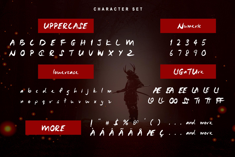 Samurai Warrior example image 2