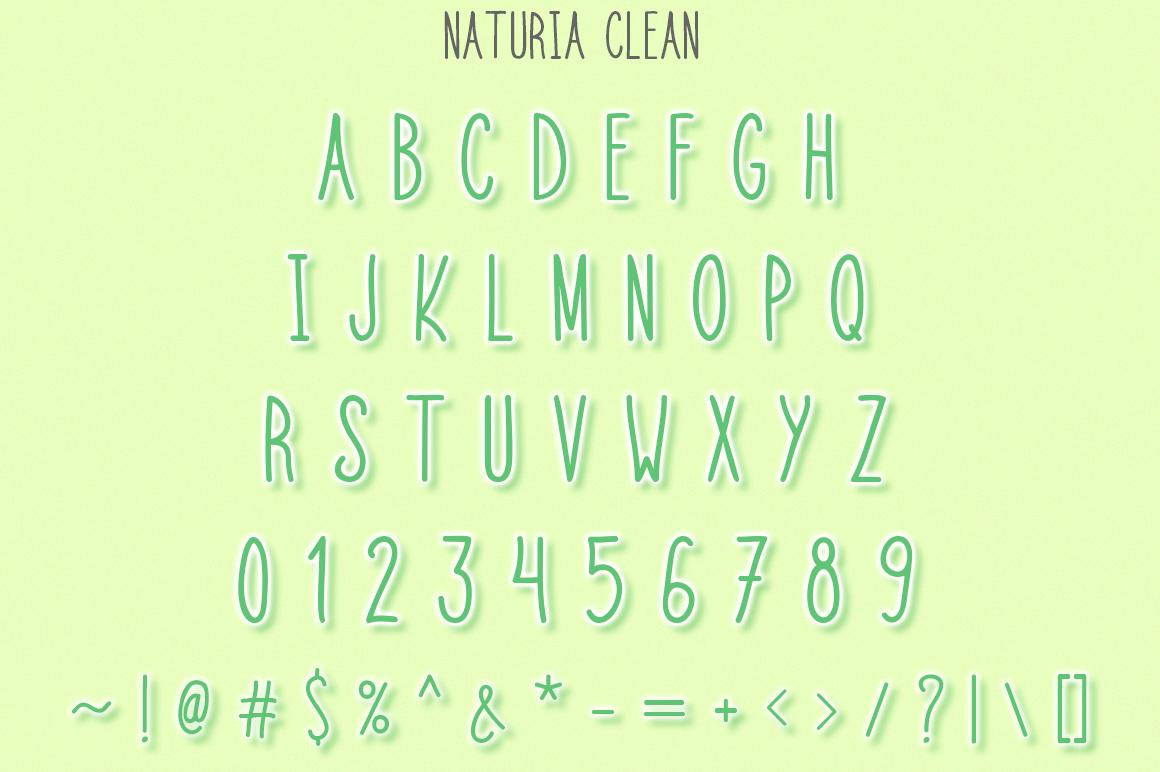 Naturia Floral Font & Bonus Extras example image 3