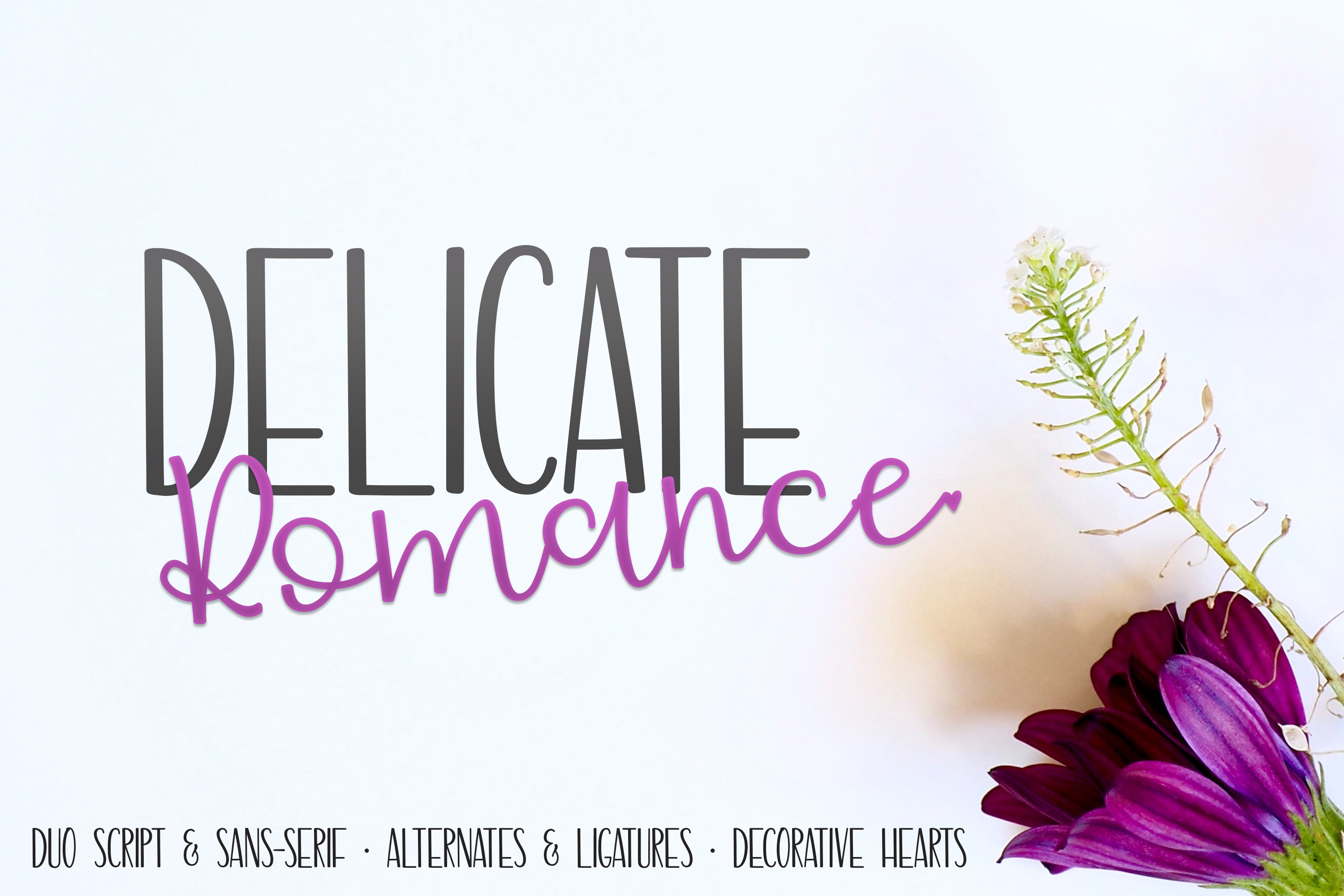 Delicate Romance Font Duo example image 1