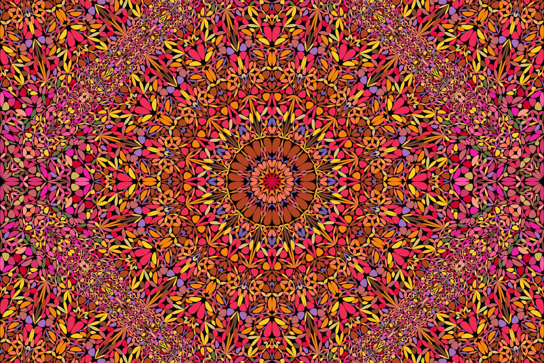 48 Seamless Floral Mandala Patterns example image 5