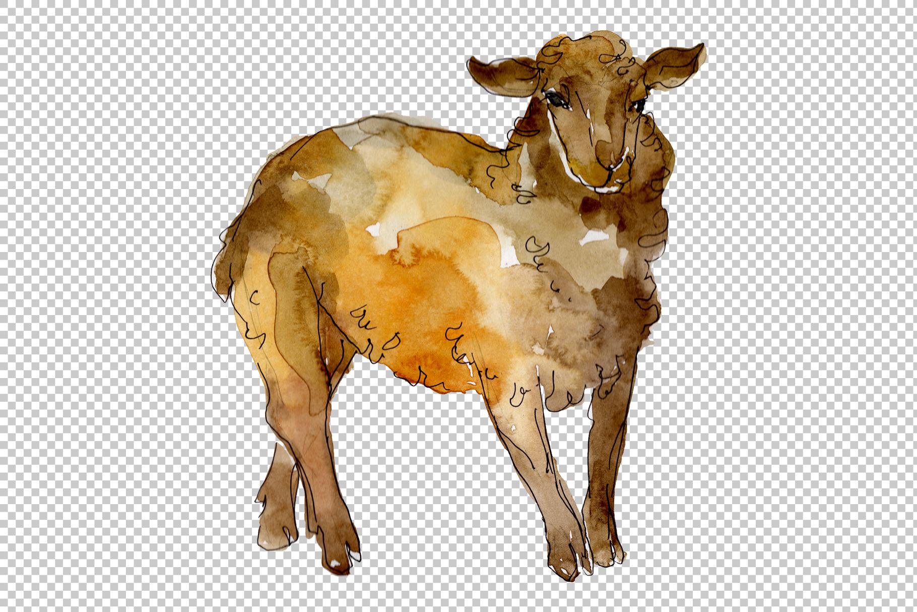 Farm animals lamb Watercolor png example image 7