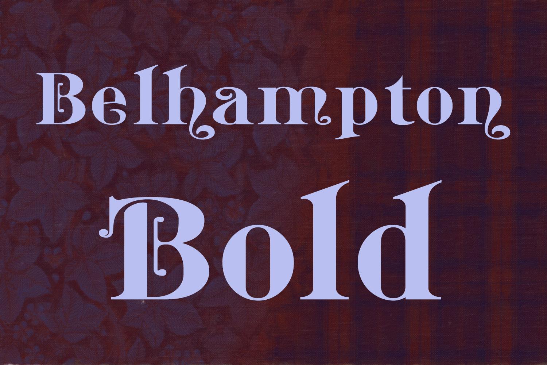 Belhampton Bold example image 2