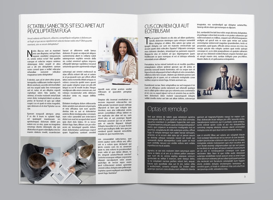 Business Newsletter Template example image 6