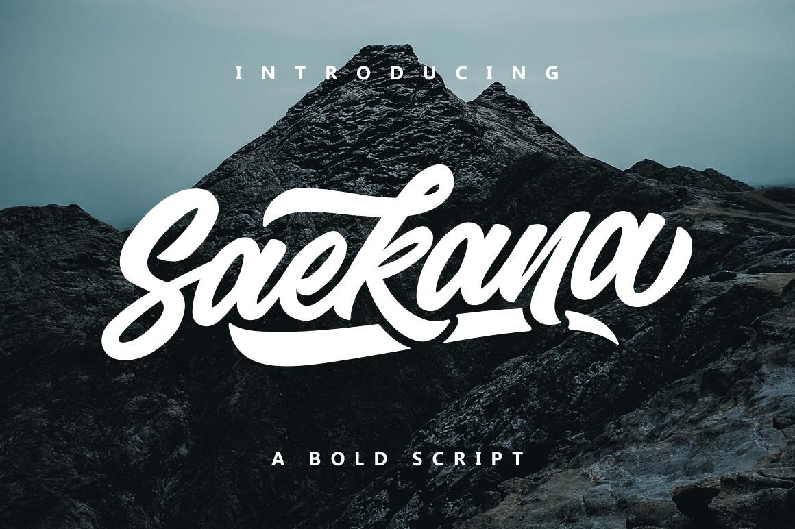 Saekana Script example image 1