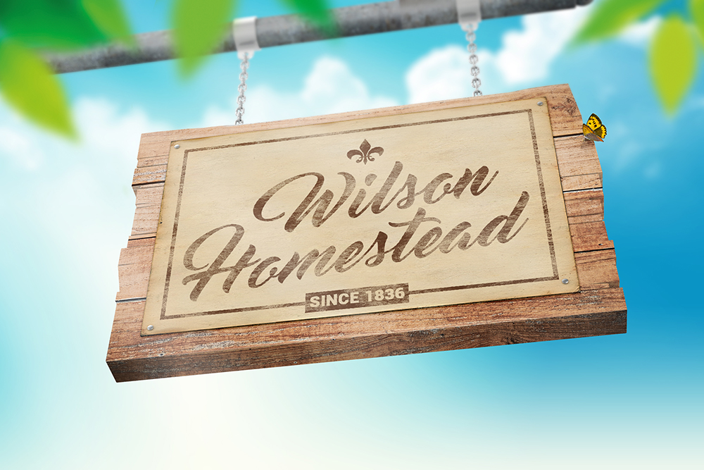 Hanging Wooden Sign Mockup example image 4