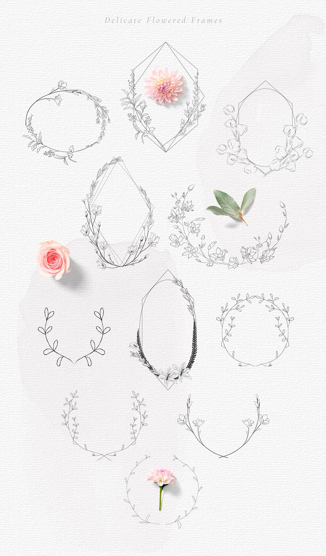 Hand drawn Decorative Illustrations example image 9