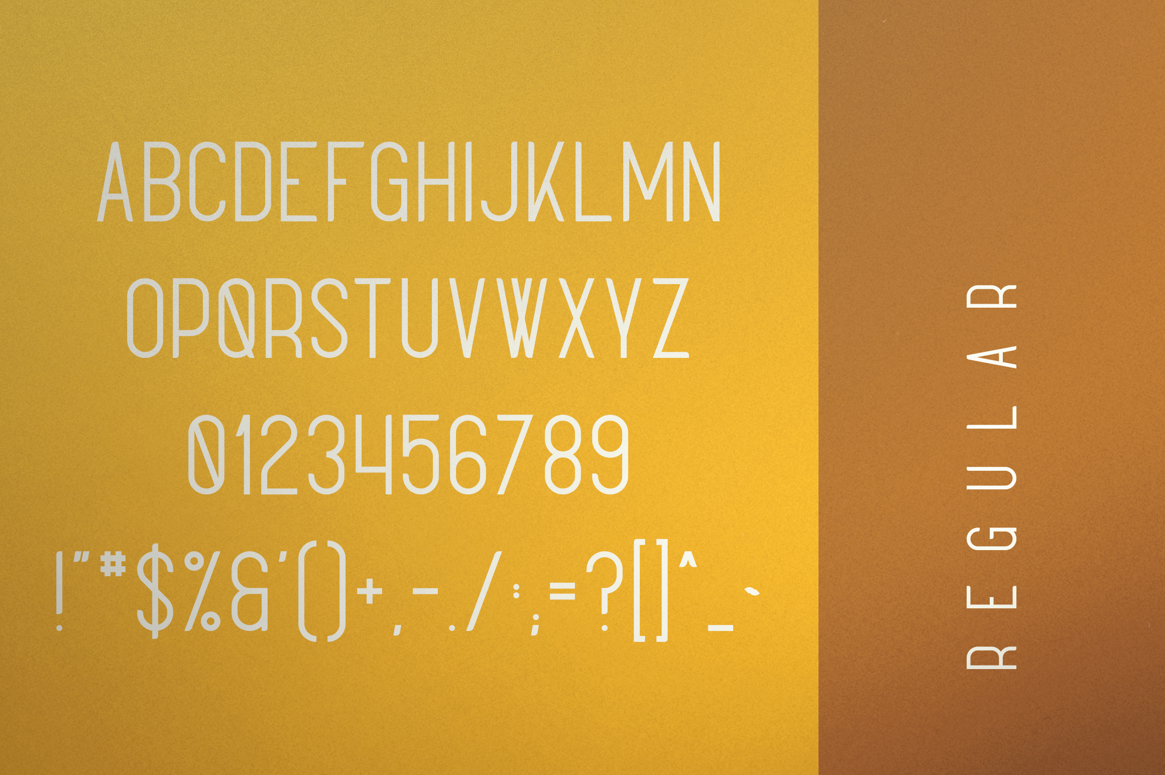Sunflower - Font Duo example image 9