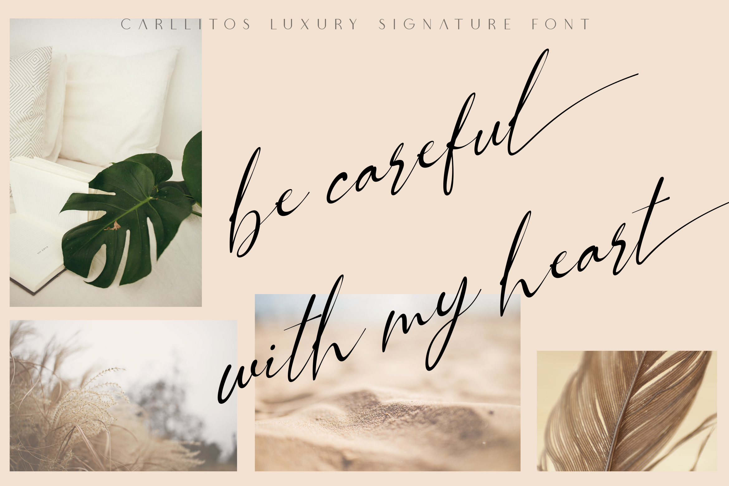 Carllitos // Luxury Signature Font example image 3