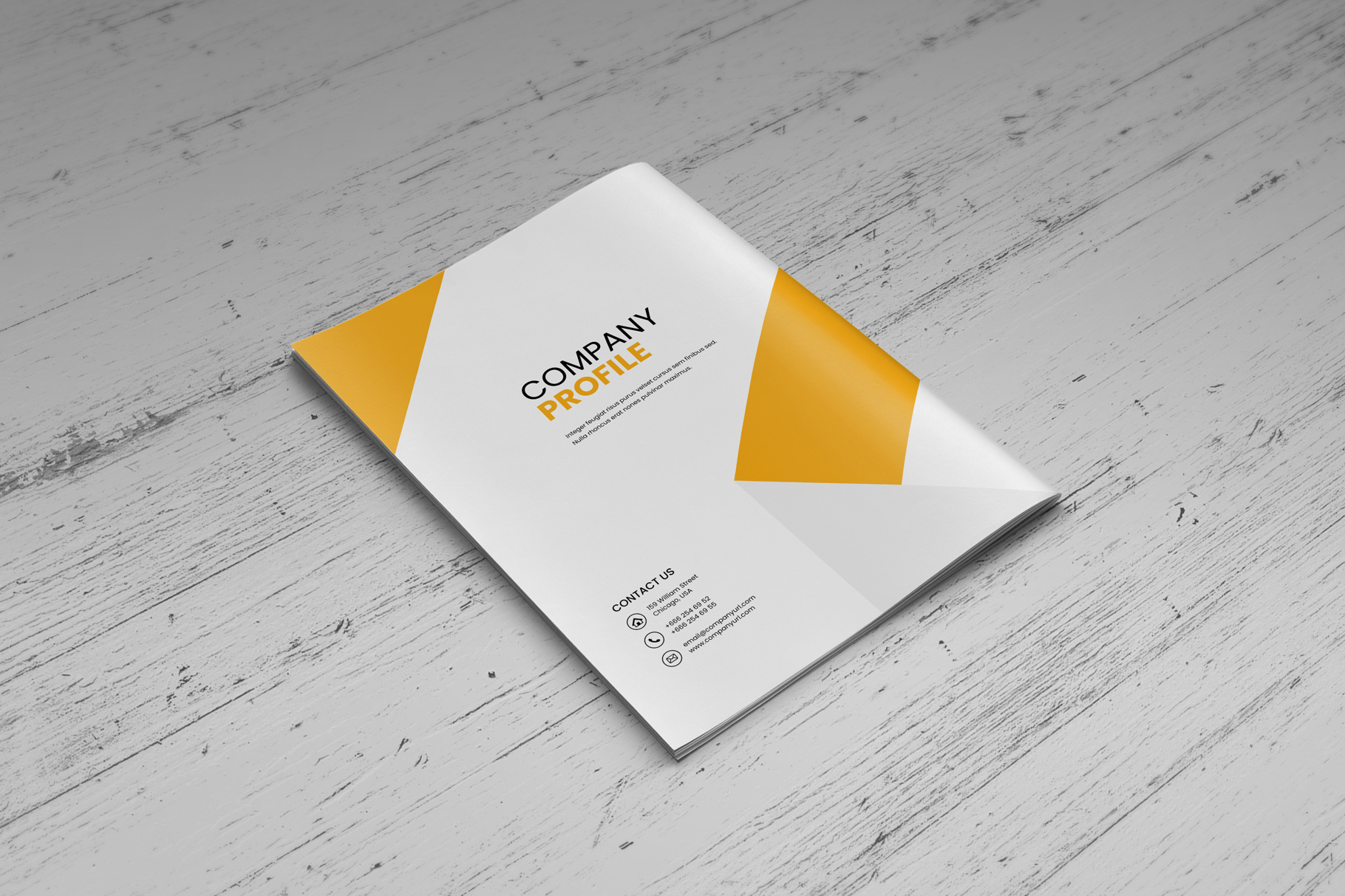 Company Profile Brochure v7 example image 11