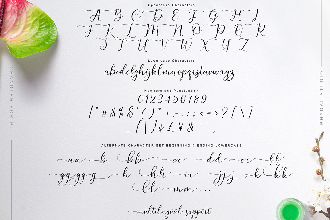 Chandler Script example image 2