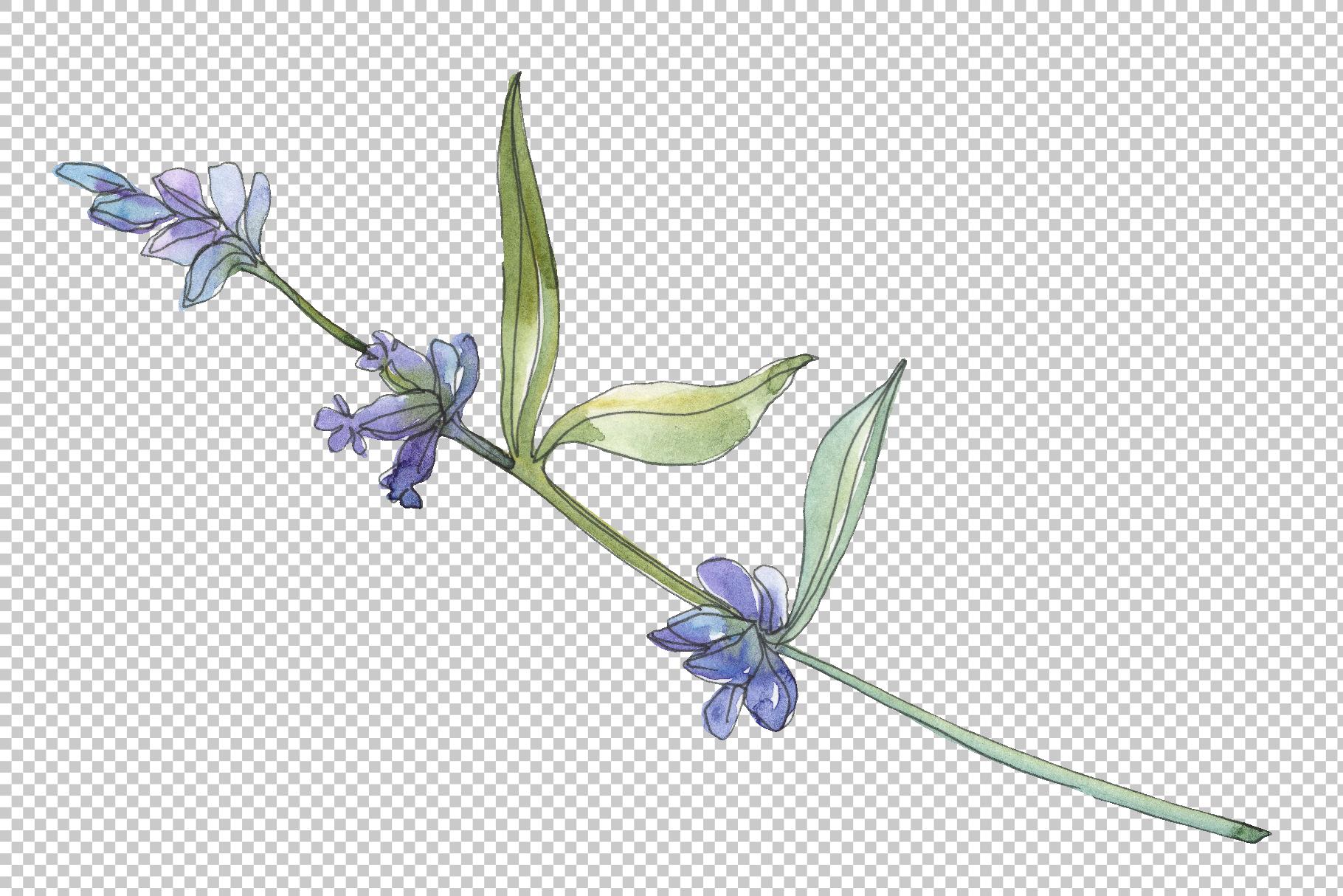 Bouquet summer breeze lavender watercolor png example image 7