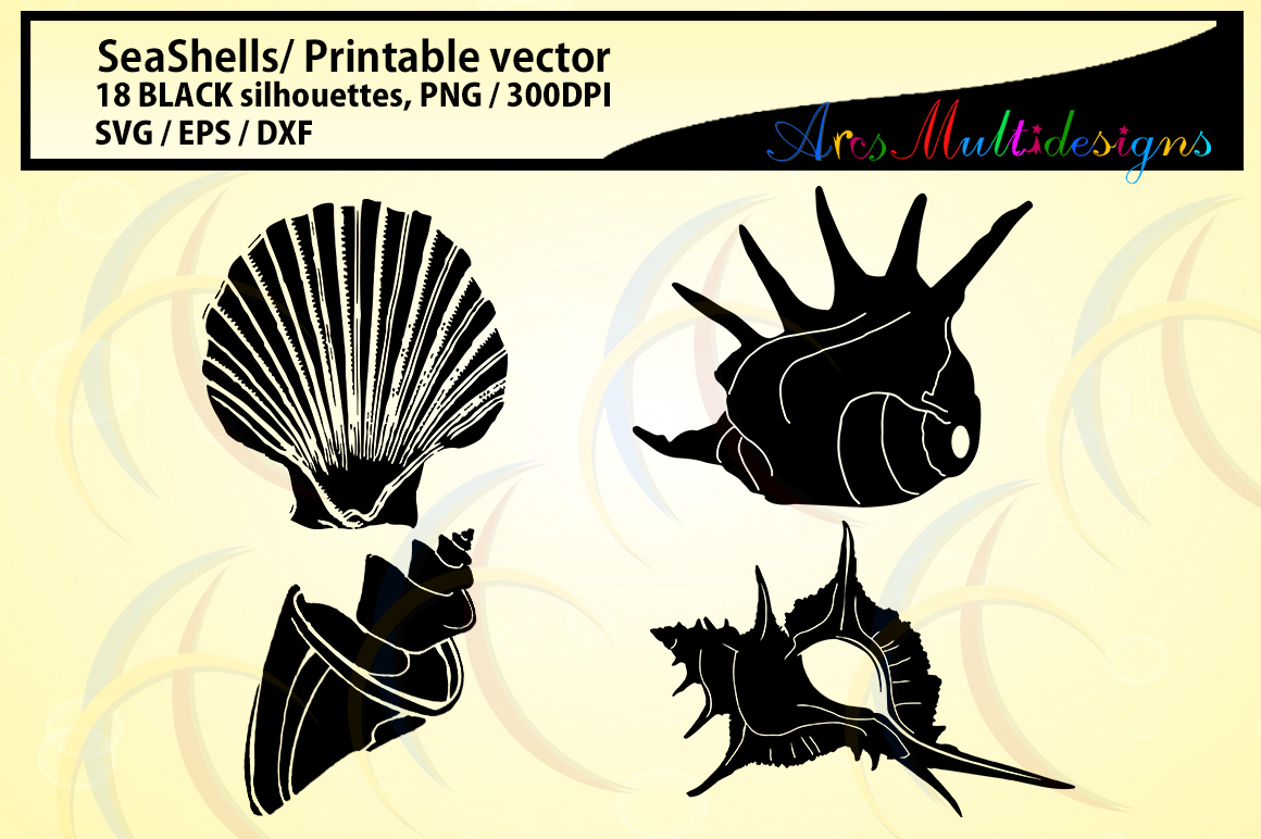 SeaShells silhouette / Sea shell /SVG / EPS / DXf vector sea shell / PNG / snails silhouette / Personal use, commercial use / High quality example image 2