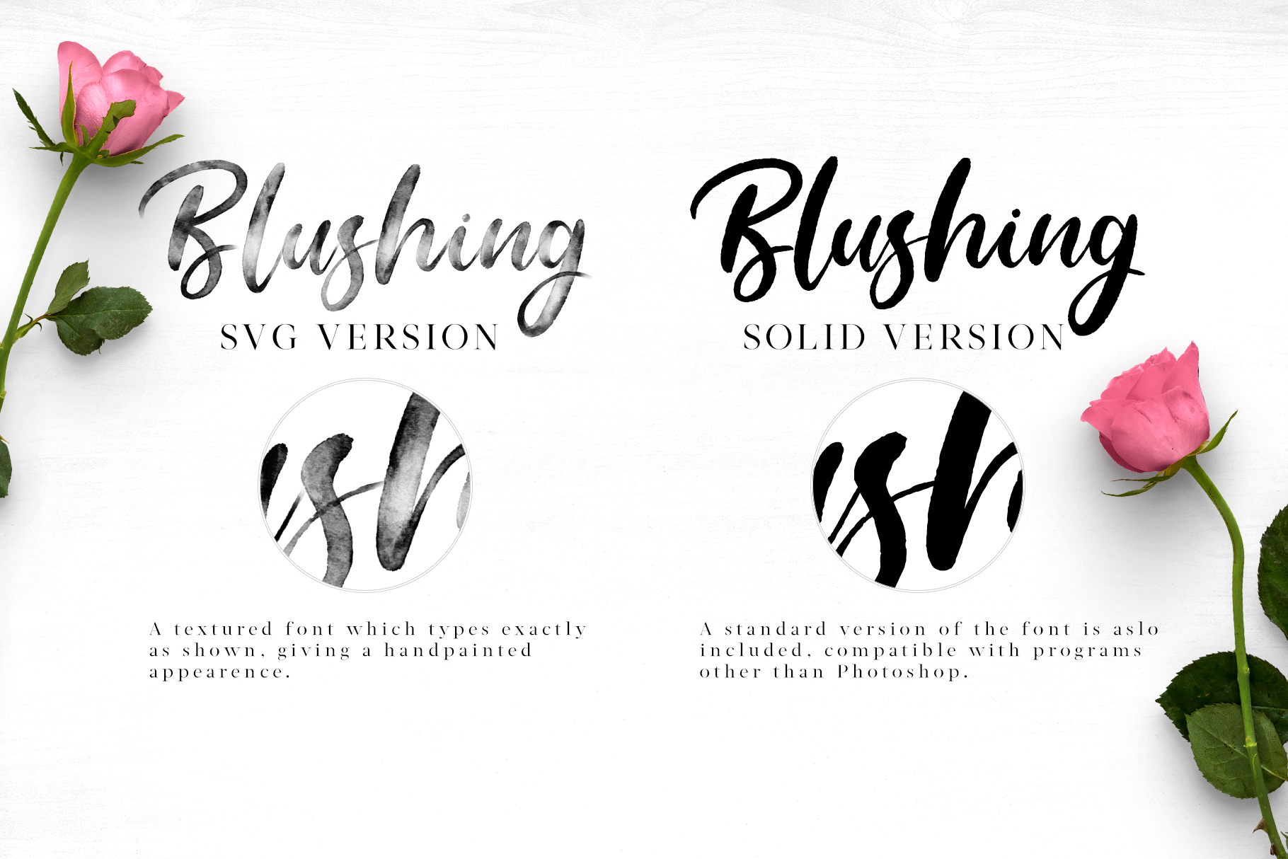 Blushing Script - SVG Font example image 4
